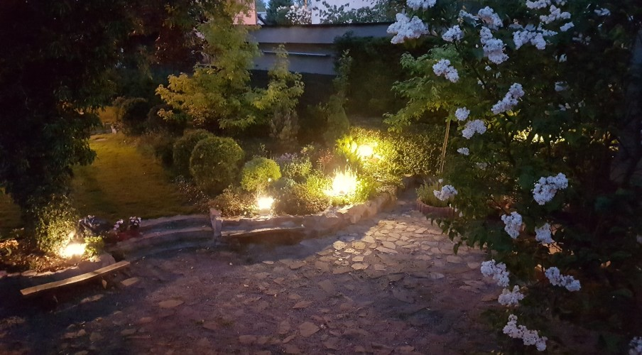Piękny ogród nocą