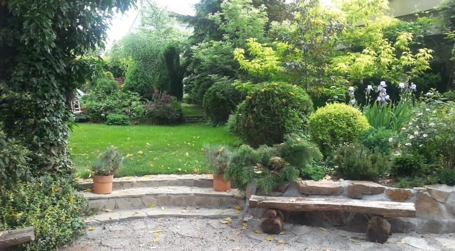 Tajemnieczy ogród z ławeczką